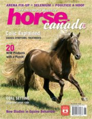 Havenwood's Stallion Jim Bob on cover of Horse Canada in 2007